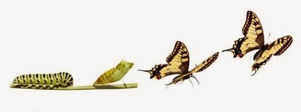 trasformazione interiore